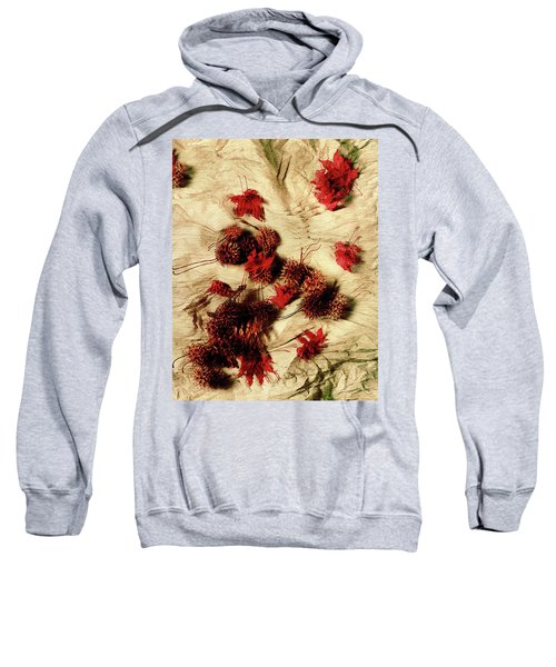 Spiked Nuts Red Sweatshirt