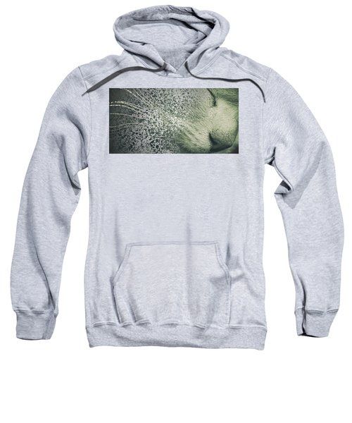 Split Whiskers Sweatshirt