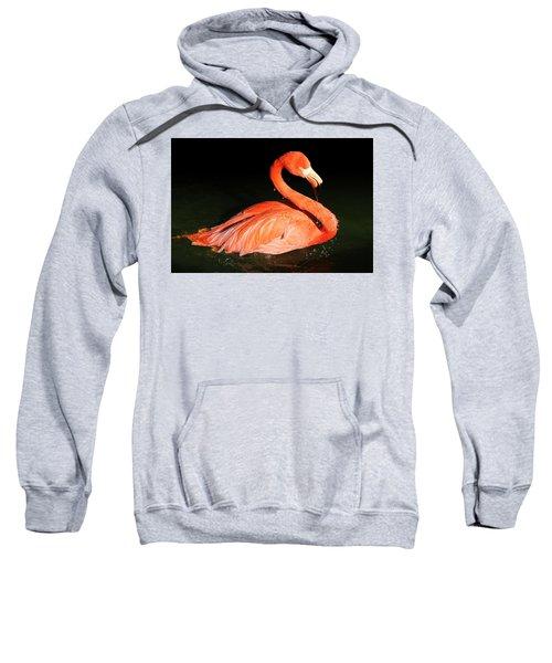 Spotlight On A Bathing Flamingo Sweatshirt
