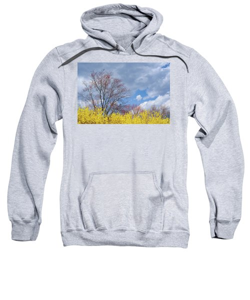 Sweatshirt featuring the photograph Spring 2017 by Bill Wakeley