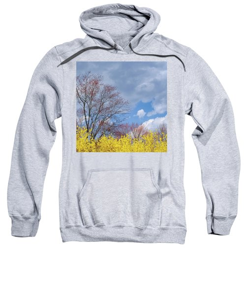 Sweatshirt featuring the photograph Spring 2017 Square by Bill Wakeley