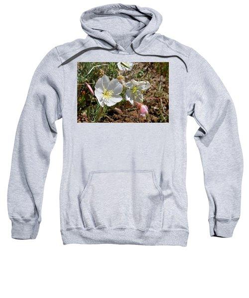 Spring At Last Sweatshirt