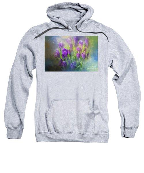 Spring Delight Sweatshirt