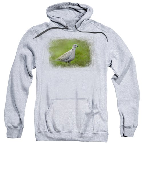 Spring Dove Sweatshirt