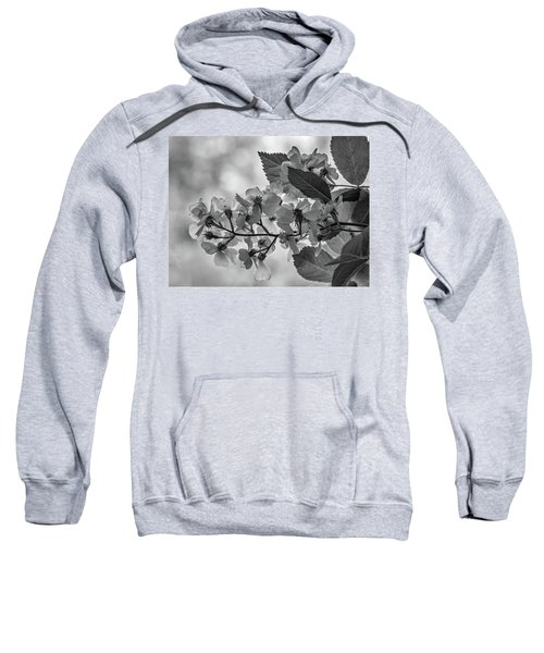 Spring Dream Bw Sweatshirt