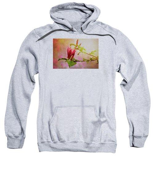 Spring Flare Sweatshirt