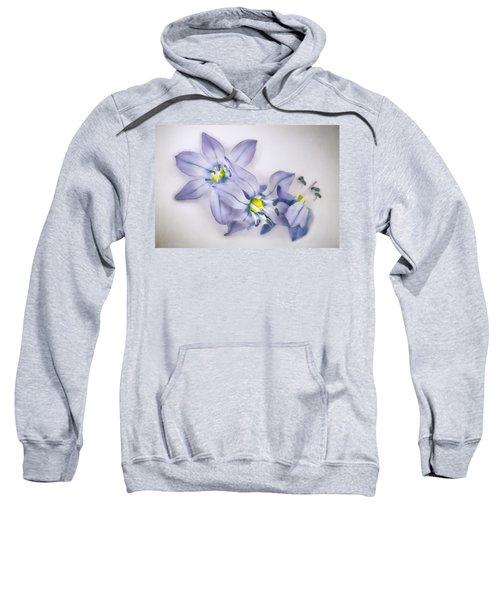Spring Flowers On White Sweatshirt