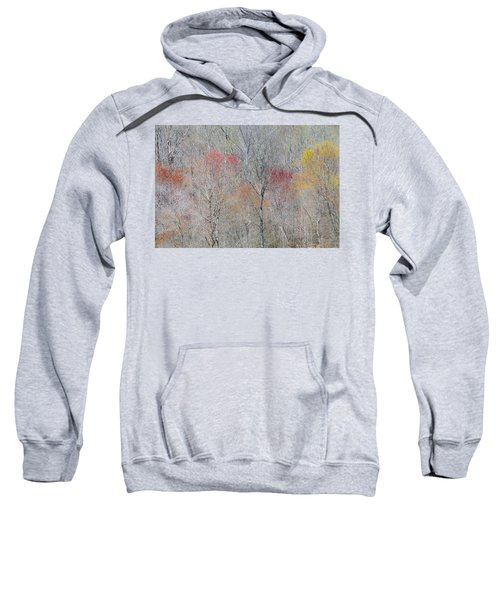 Spring Growth Sweatshirt