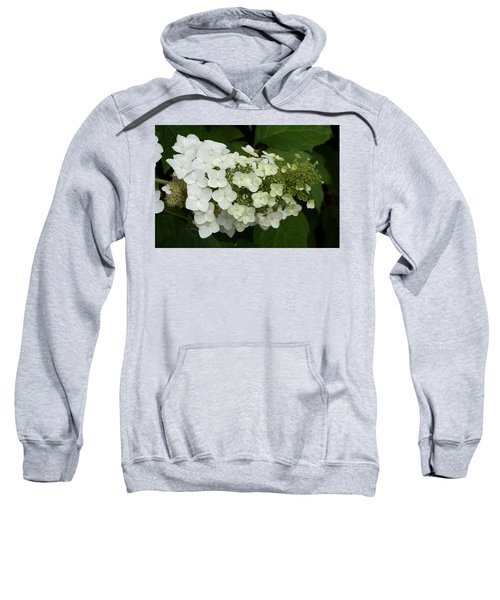 Spring Is Busting Out All Over Sweatshirt