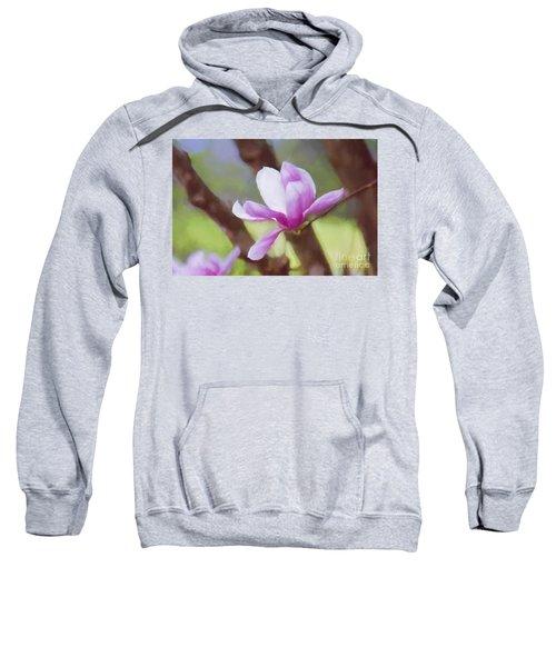 Spring Pink Saucer Magnolia Sweatshirt