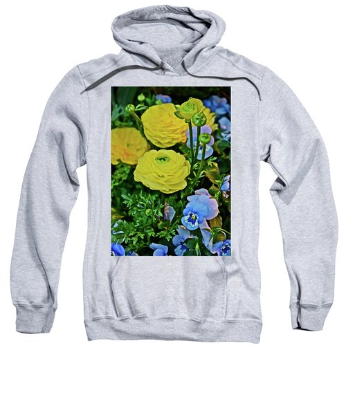 Spring Show 18 Persian Buttercup With Horned Viola Sweatshirt