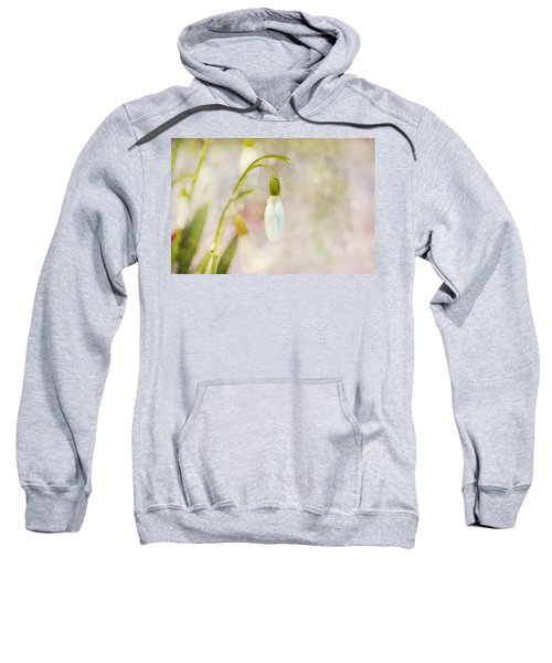Spring Snowdrops And Bokeh Sweatshirt