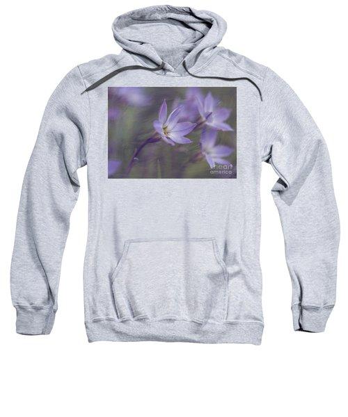 Spring Starflower Sweatshirt