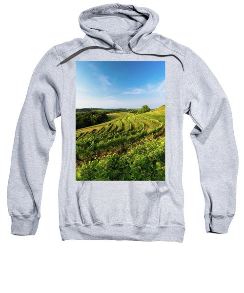 Spring Vinyard Sweatshirt