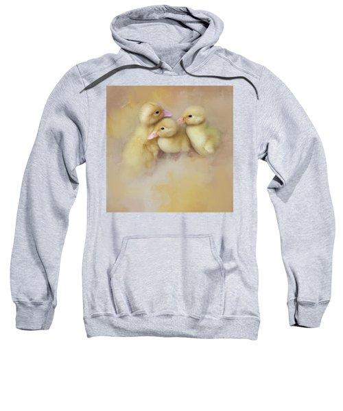 Springtime Babies Sweatshirt