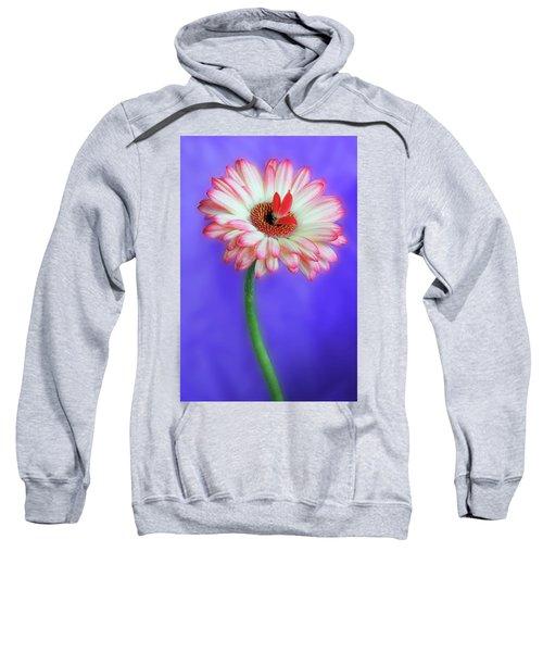 Sprouting Dahlia Sweatshirt