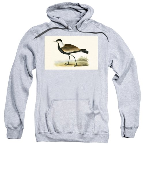 Spur Winged Plover Sweatshirt by English School