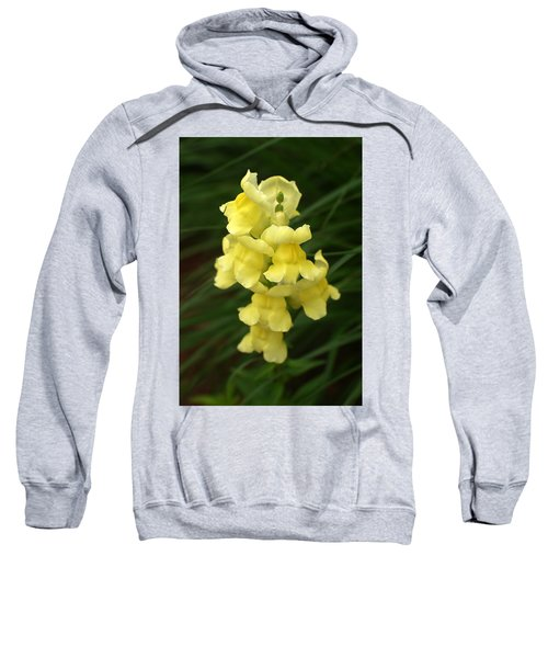St. Johns Flower 866 Sweatshirt