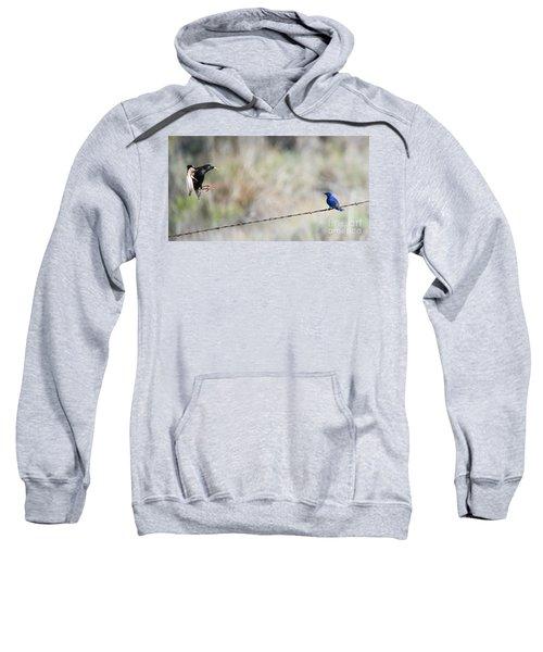 Starling Attack Sweatshirt