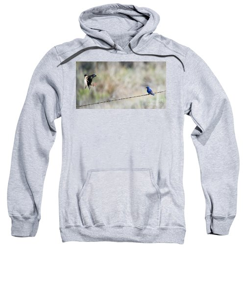 Starling Attack Sweatshirt