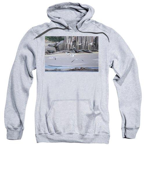 Statio 12 Sweatshirt