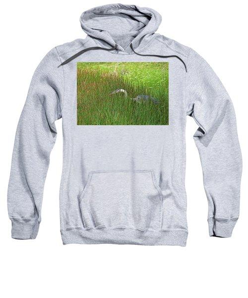 Stealth Heron Sweatshirt