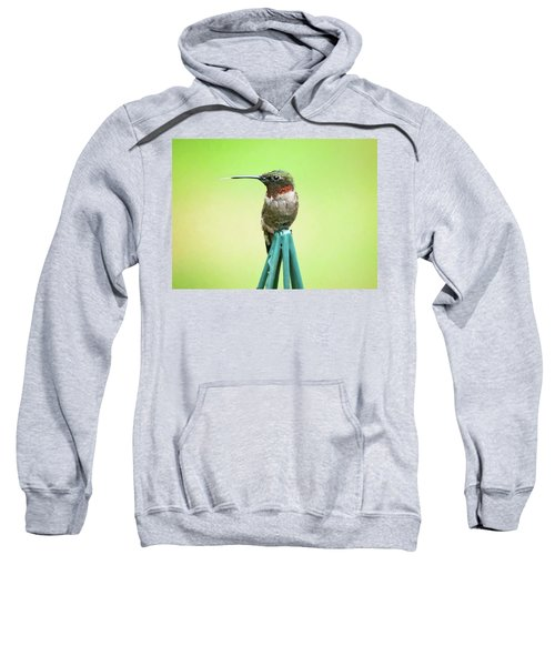 Stick Out Your Tongue Sweatshirt