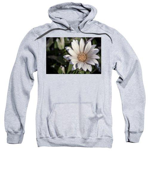Still Dreaming Sweatshirt
