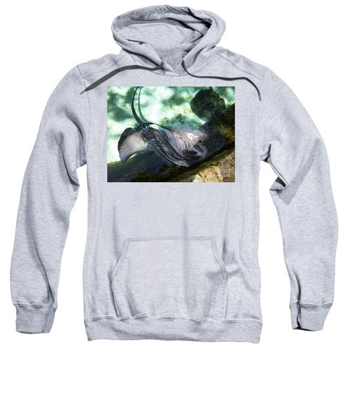 Sweatshirt featuring the photograph Stingray Wave by Francesca Mackenney