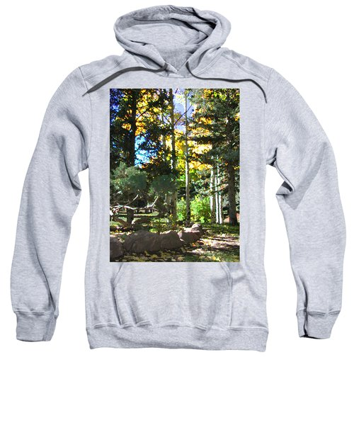 Stone Park Trails Sweatshirt