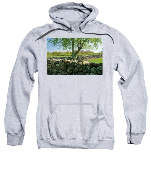 Stone Wall In Rhode Island Sweatshirt