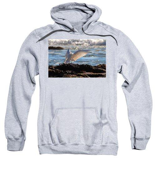 Strut Sweatshirt
