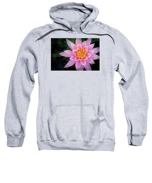 Stunning Water Lily Sweatshirt