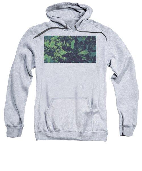 Succulents #2 Sweatshirt