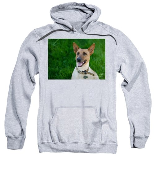 Sugar 2 Rectangular Sweatshirt