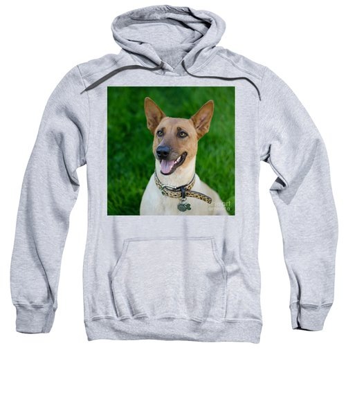 Sugar 2 Square Sweatshirt
