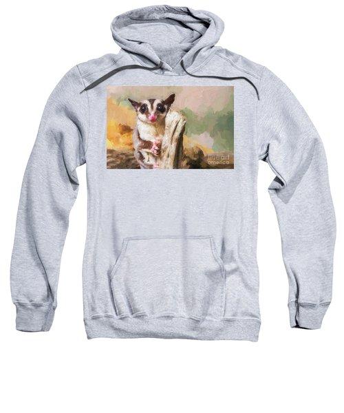 Sugar Glider - Painterly Sweatshirt
