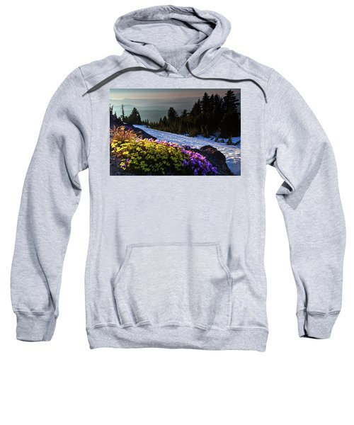 Summer And Winter Sweatshirt