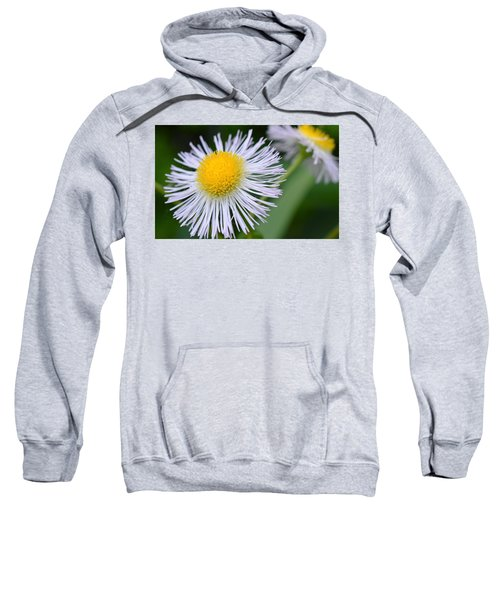 Summer Flower Sweatshirt