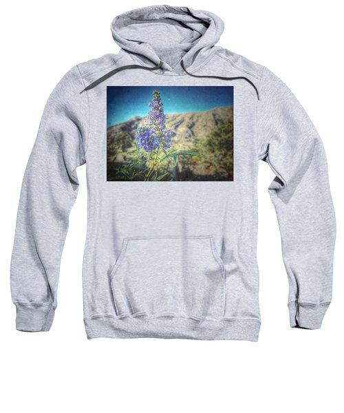 Summer Glow Sweatshirt