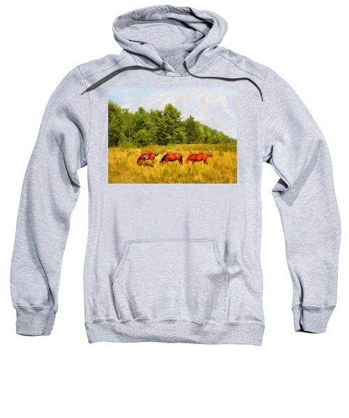 Summer Hay Burners Sweatshirt