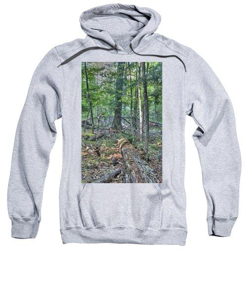 Summer In A Canadian Forest Sweatshirt