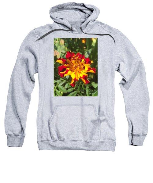 Summer Marigold Sweatshirt