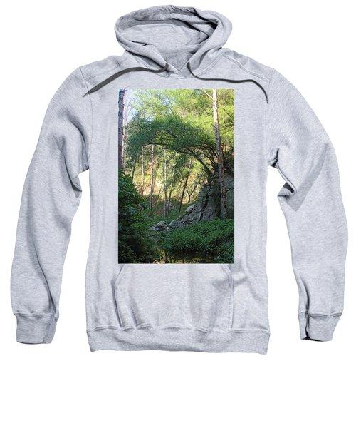 Summer On Bitten Path Sweatshirt