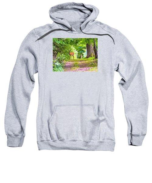 Sweatshirt featuring the photograph Summer Stroll by Anthony Baatz