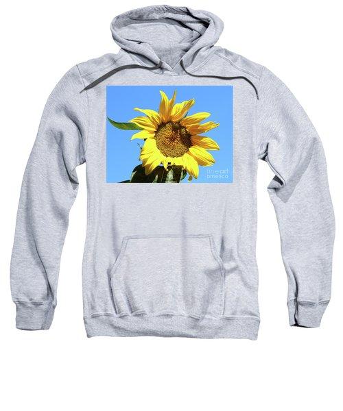 Sun In The Sky Sweatshirt