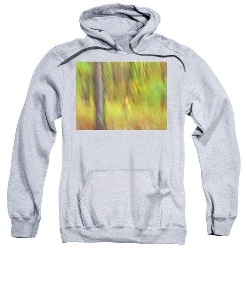 Sun Kissed Tree Sweatshirt