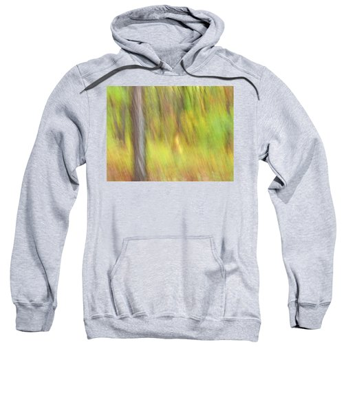 Sun Kissed Tree Sweatshirt