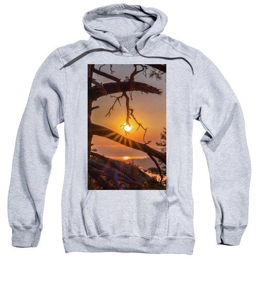 Sun Ornament - Cropped Sweatshirt