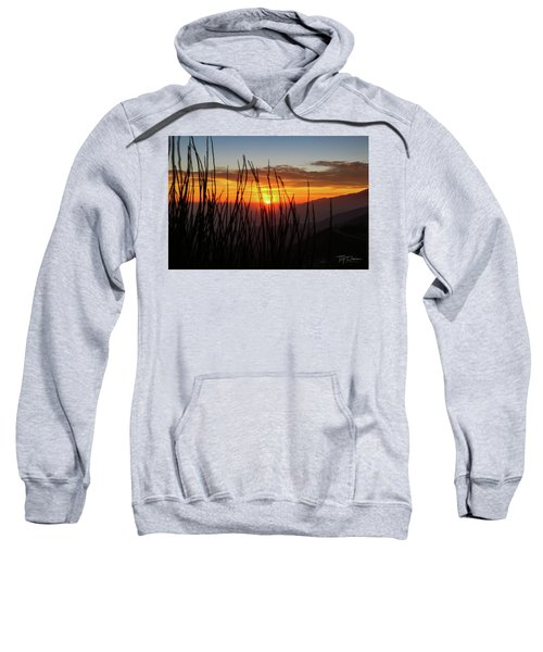 Sun Through The Blades Sweatshirt